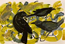 Three Black Birds, watercolor 16x24 $785