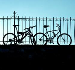Bikes, Savannah