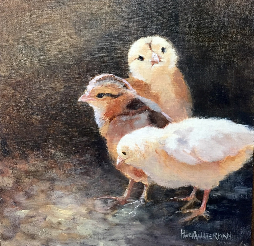 One chick, Two chick-Waterman, oil 8x8 $875
