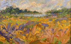 Where the Wildflowers Grow, oil 24x36 $5000