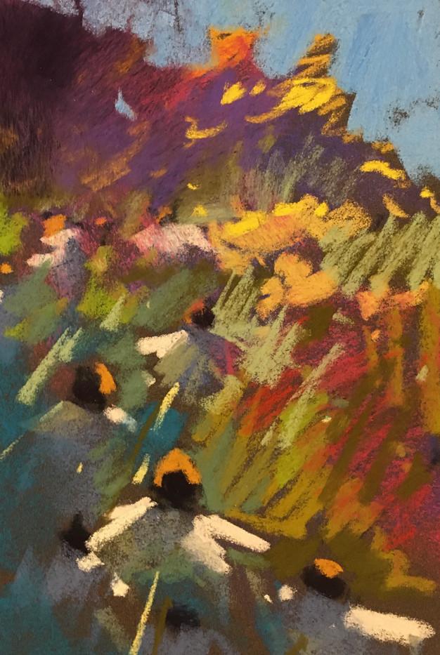 Coneflowers-Will, pastel 6x9 $700