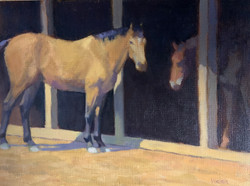 Stable Mates12x16 oil on linen $1000
