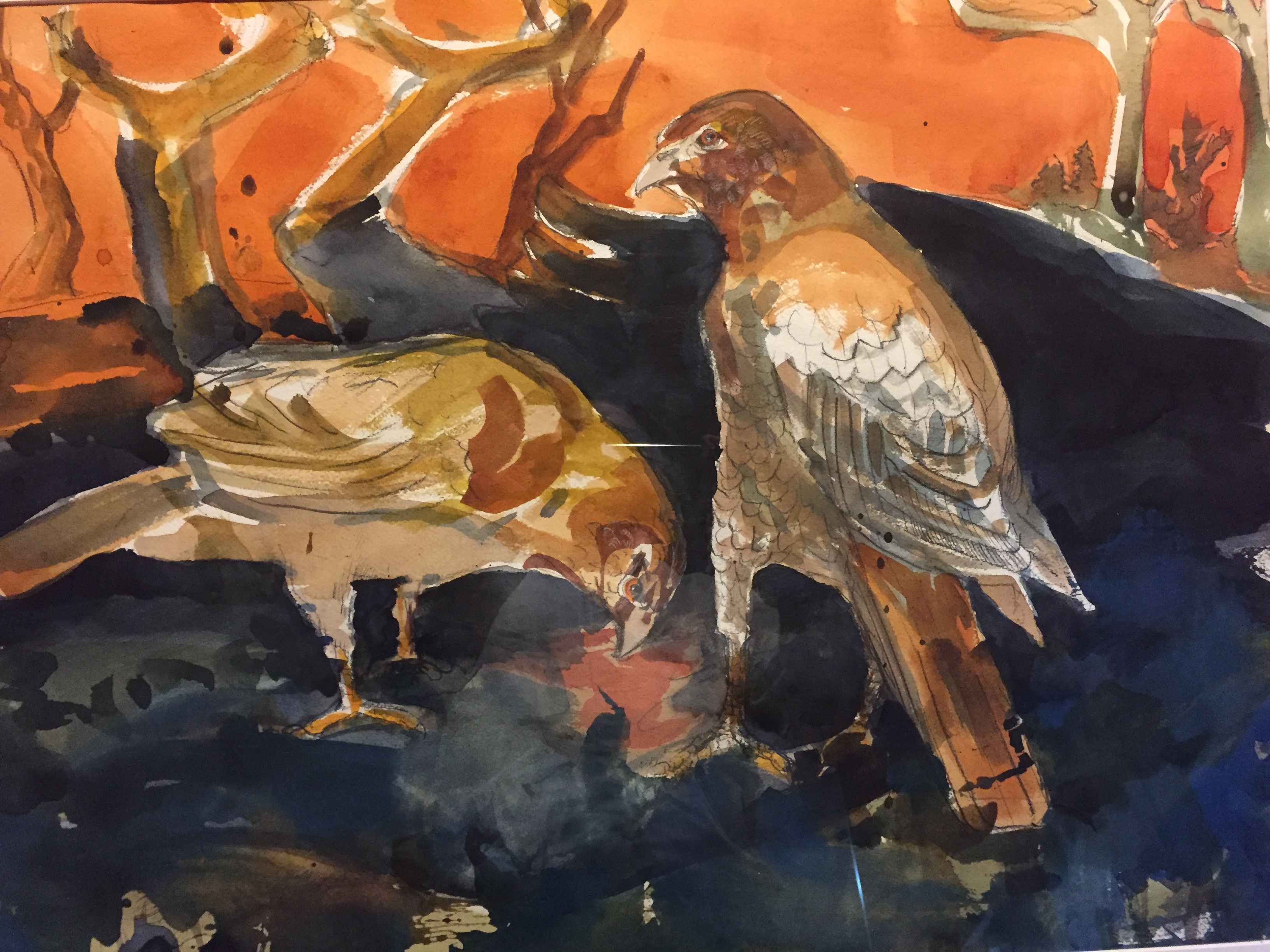 Red Tails-Garber, watercolor $1600