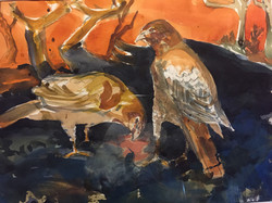 Red Tails, watercolor $1600