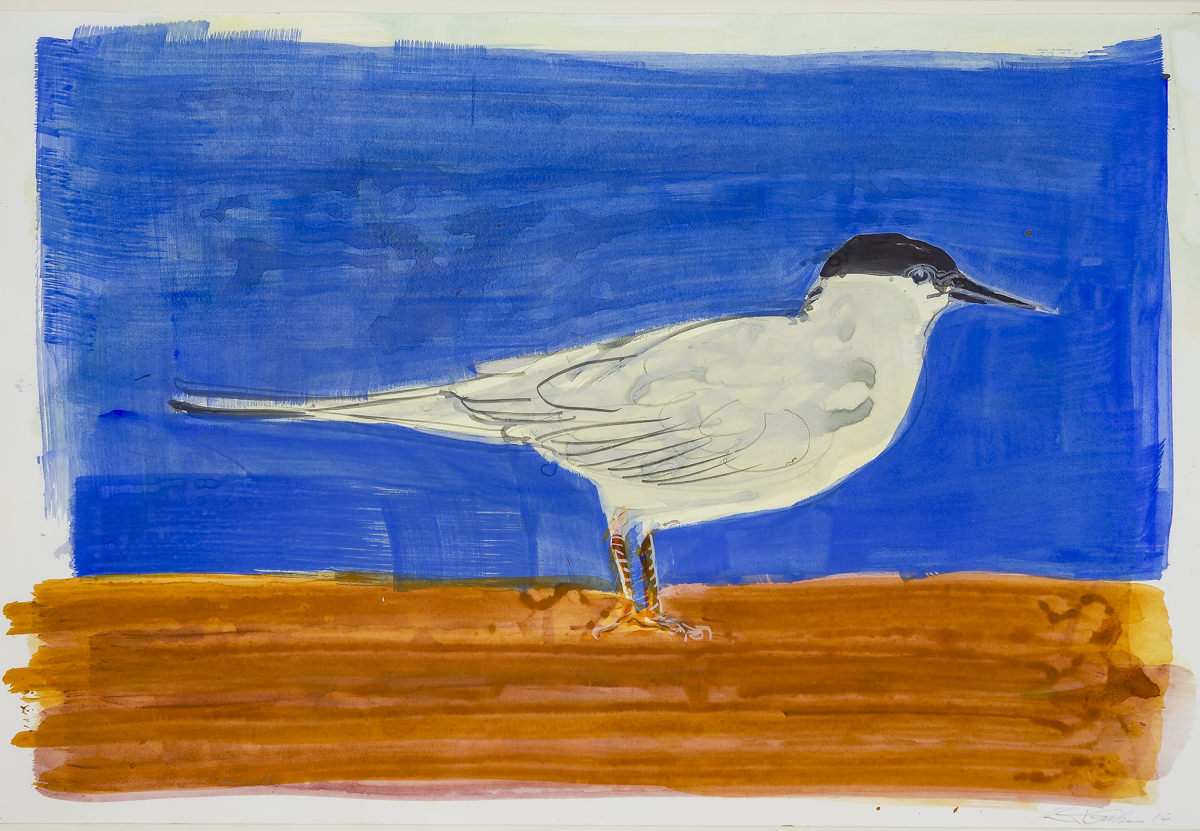 Garber, watercolor $325
