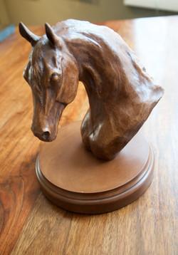 Horse Head-Bennett, resin $150