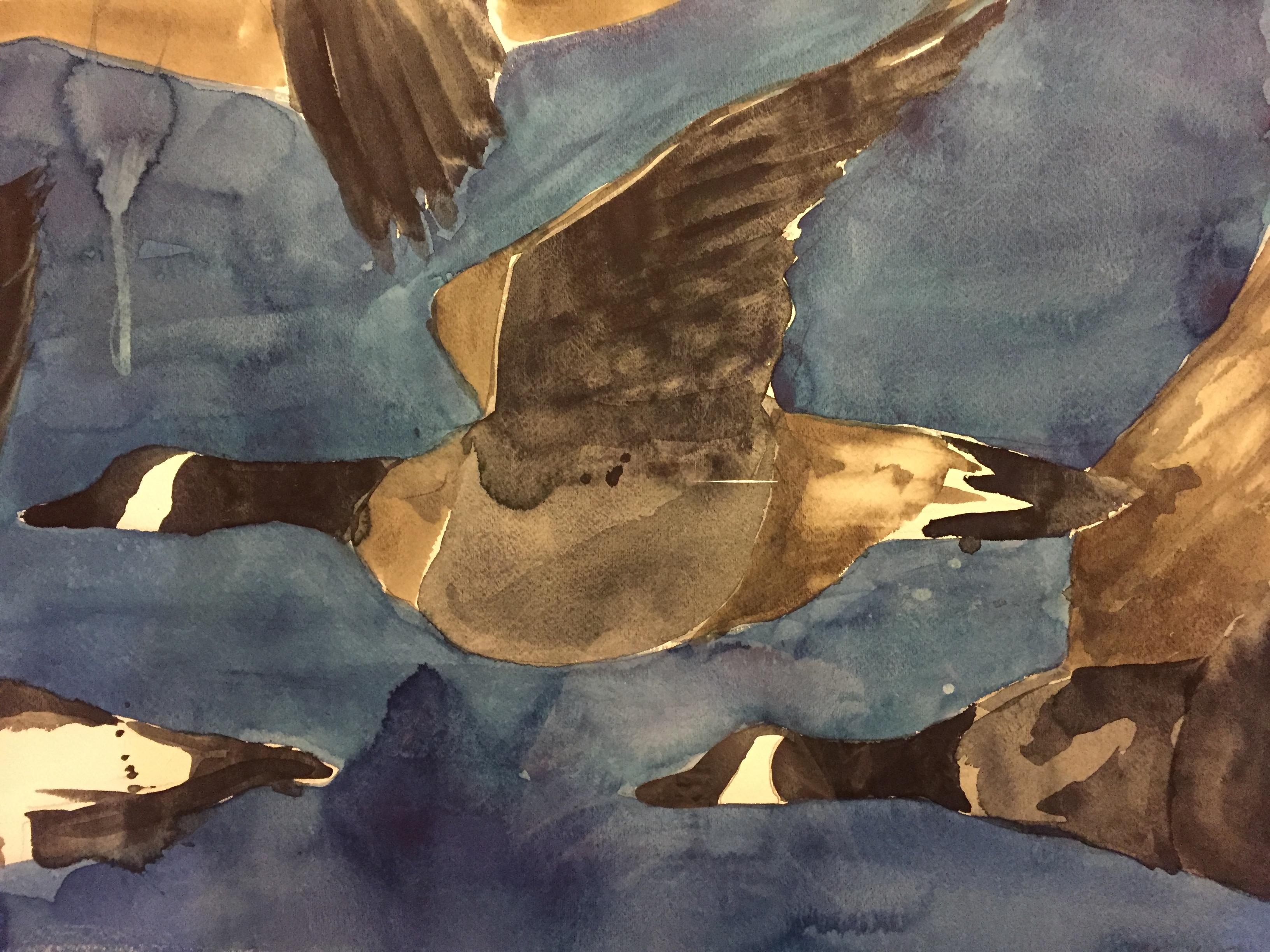 Geese in Flight-Garber, watercolor $1425