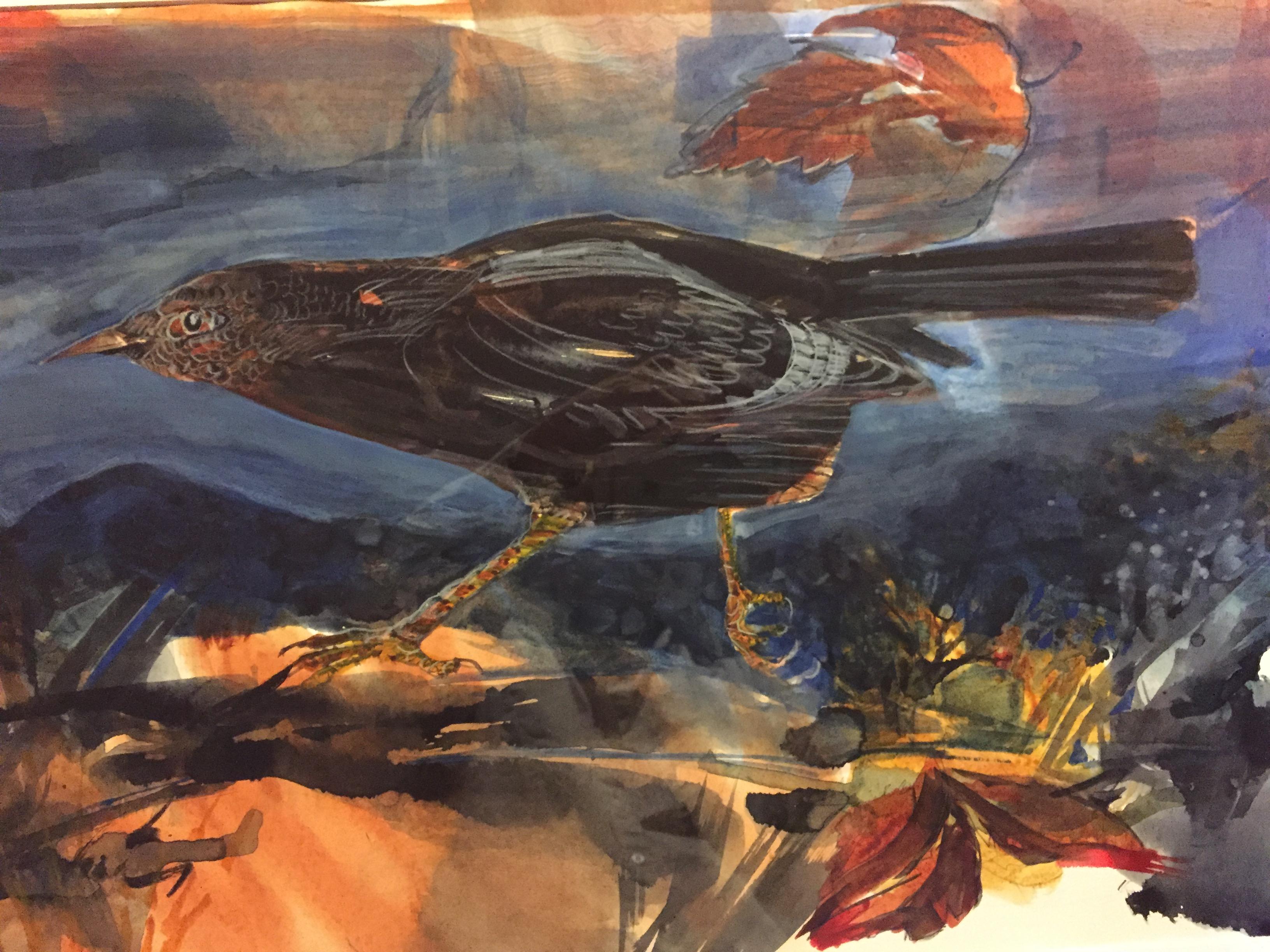 Grackle-Garber, watercolor 4325