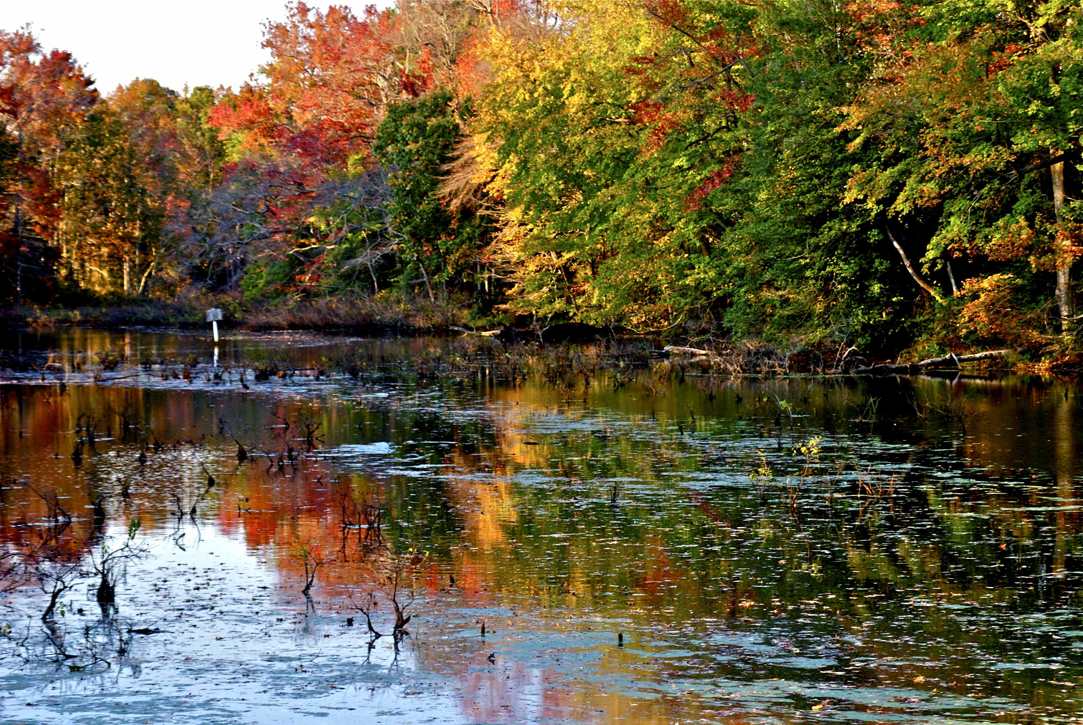 Kintore Lake-