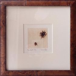 Spider and Fly, Fain watercolor etching