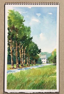 Lee Haven Windbreak-Csont, watercolor $975
