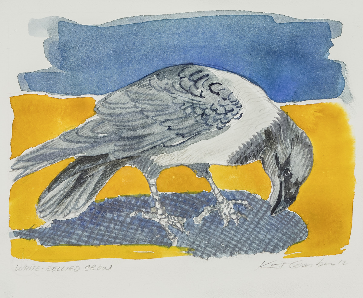 White Bellied Crow-Garber, watercolor $325