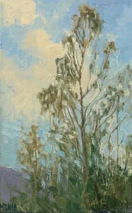Tree in June,Pisano, oil 3x5 $800