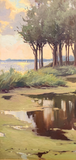 Reflections-Babak, oil 12x24 $2350