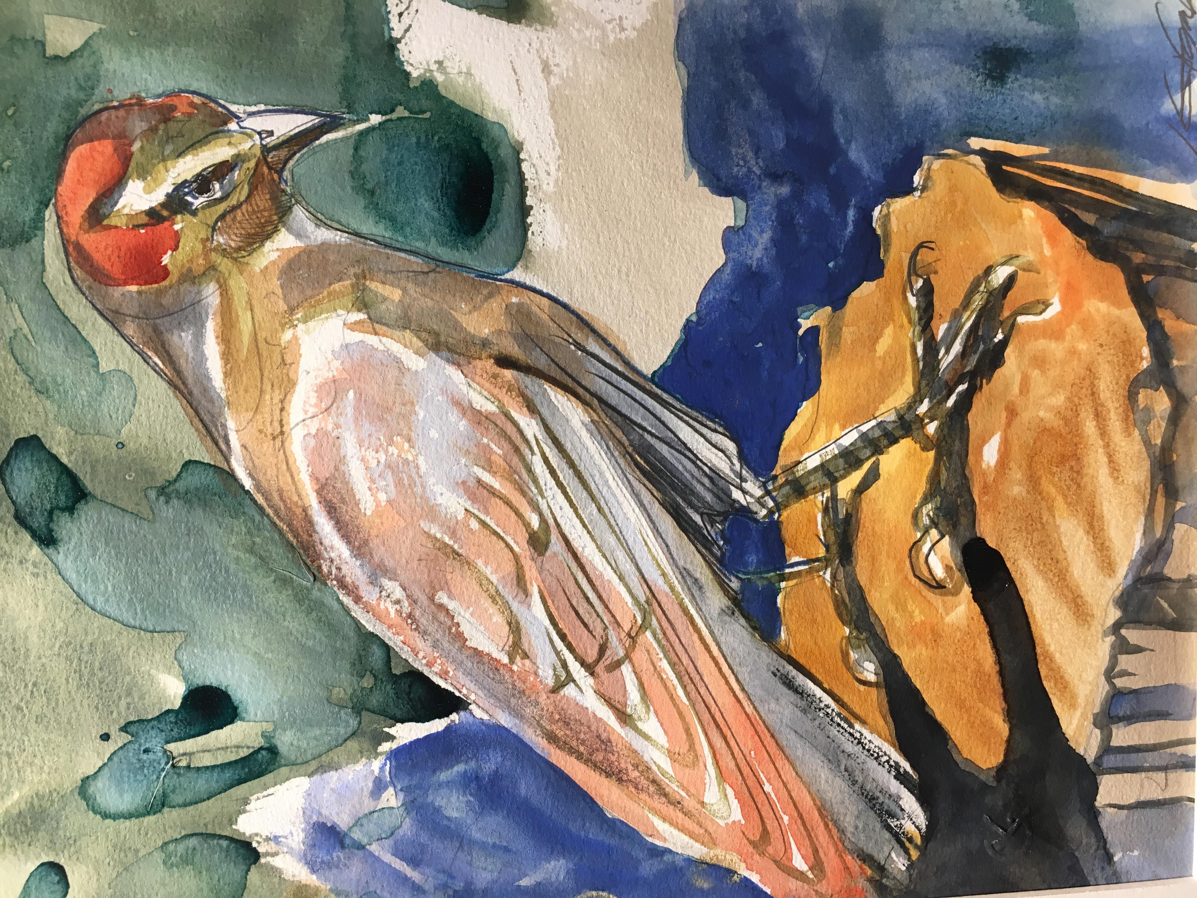 Red Bellied Woodpecker-Garber, watercolor $1200