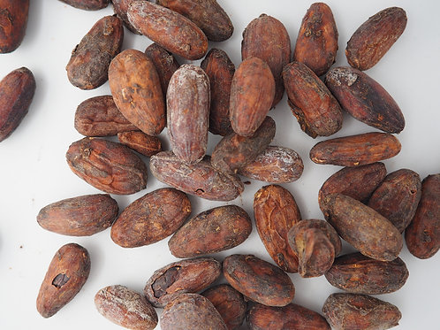 100gr cocoa beans from panama