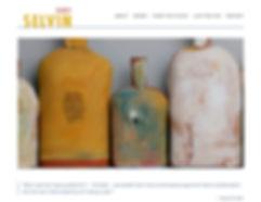 selvin-studios_Vernalim-web-design