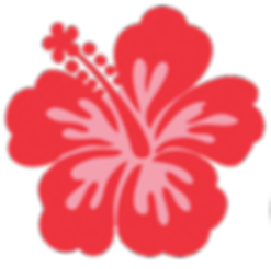 Hibiscus-Commons-logo-transparent_edited