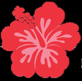 Hibiscus-Commons-logo-transparent_edited