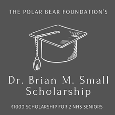 the polar bear foundation (3).png