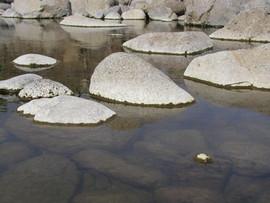 בֵּין מַיִם לָמָיִם - סיורים לימודיים והרצאות לקהל הרחב בנושאי המים