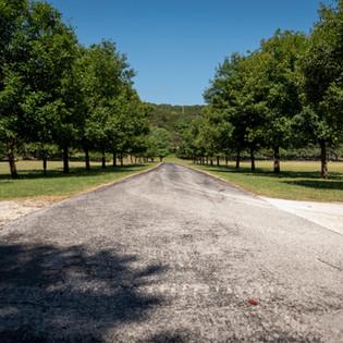 Gate_Driveway.JPG