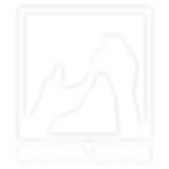 logo ´png-01.png