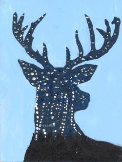 Deer ... New Beginnings