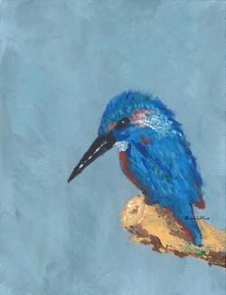 Kingfisher ... Determination