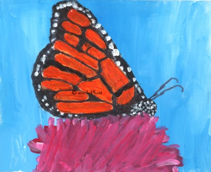 Butterfly ... Transformation