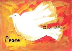 Dove ... PEACE