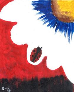 Ladybug ... Wishes Fulfilled