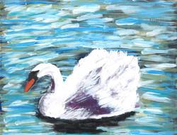 Swan ... Grace