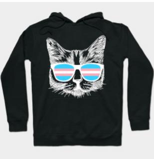 Trans Cat Sunglasses Hoodie
