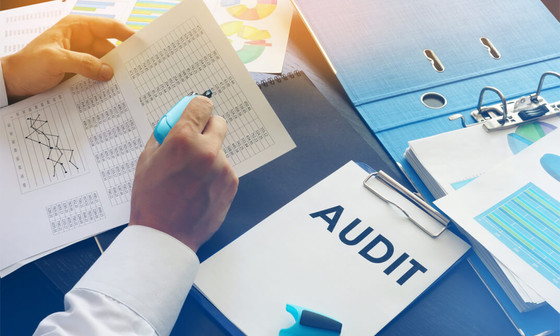 Victorian Water Supplier and Water Storage Manager Audits 2020