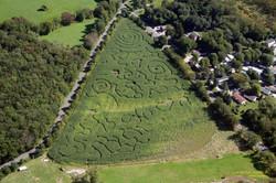 2008 Corn Maze