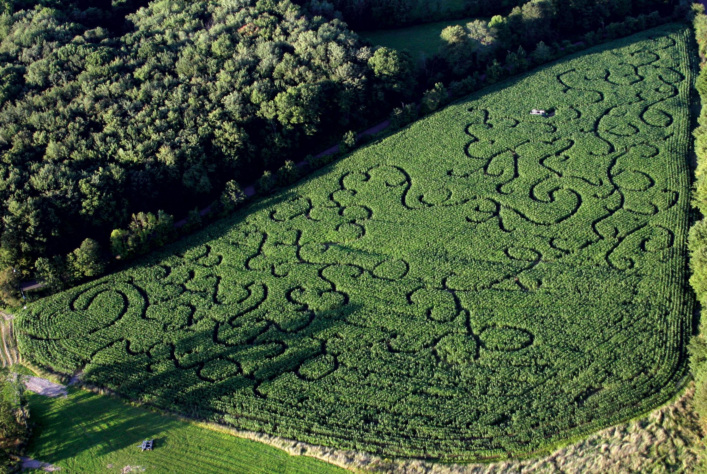 2007 Corn Maze