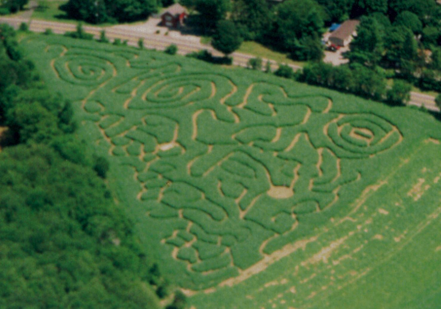 2002 Corn Maze