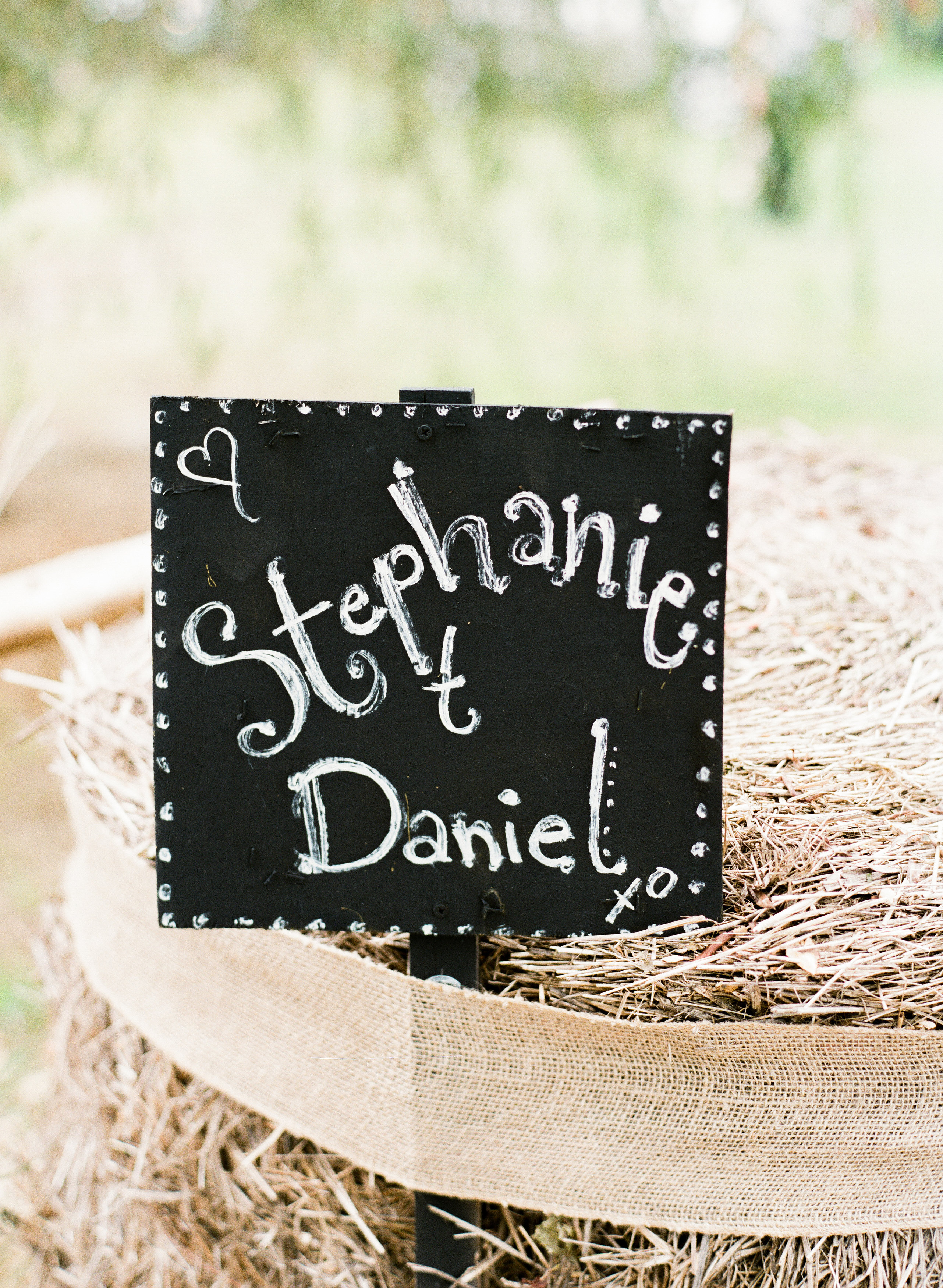 Stephanie&Dan-Wedding-LindsayMaddenPhotographyV-93