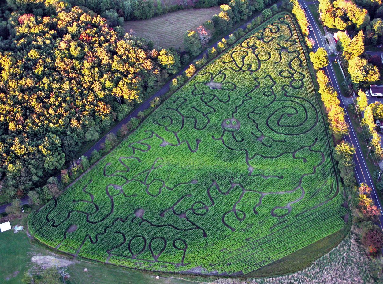 2009 Corn Maze