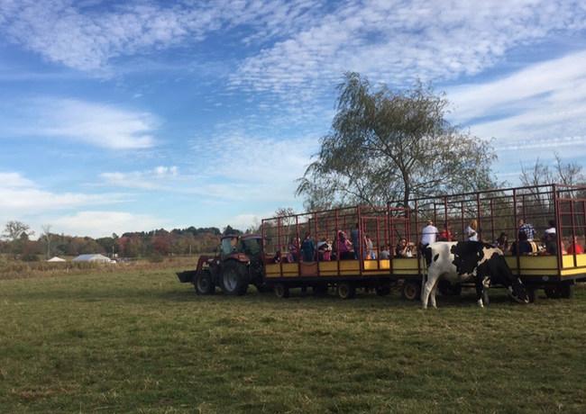 Castle Hill Farm Hay Ride.JPG