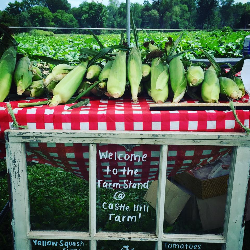 The Farm Stand at Castle Hill Farm