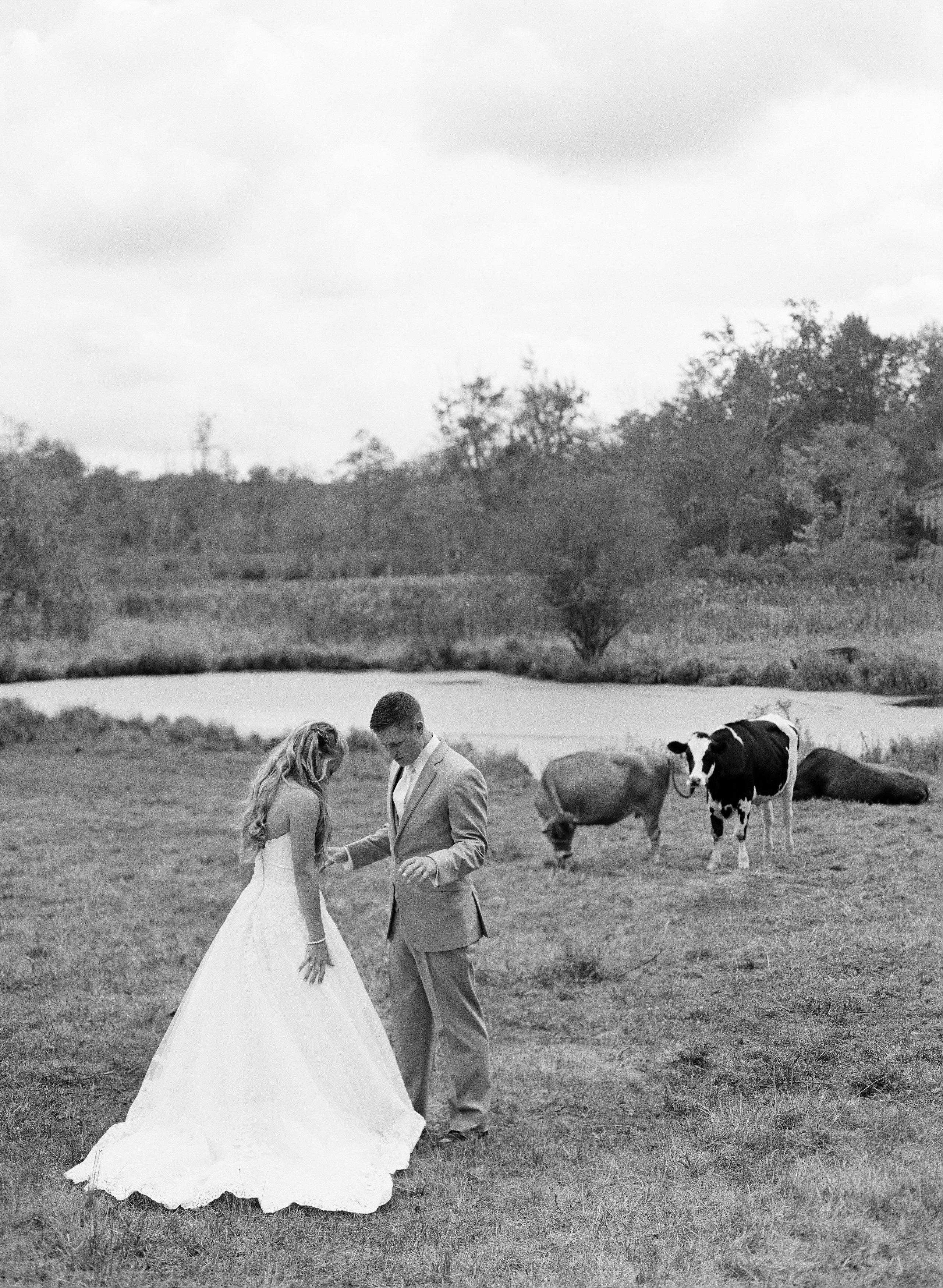 Stephanie&Dan-Wedding-LindsayMaddenPhotographyII-49