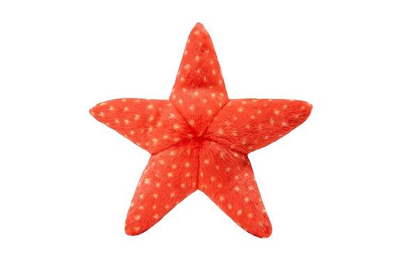 Fluff & Tuff Ziggy Starfish