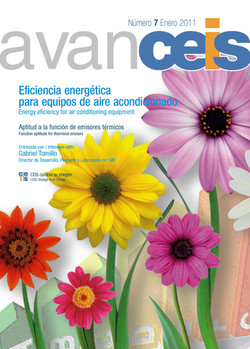 Boletin AVANCEIS (1).jpg