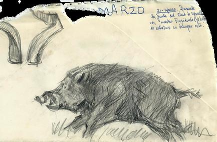 Nuestro presidente el Conde Yebes confeccionó estos dibujos sobre el reverso de un sobre roto durante la reunión de la junta directiva del 21 de marzo de 1963