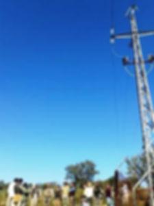 Linces en Sierra Morena Fotografía: Mario Bregaña Etxeberría