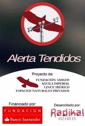 ALERTA TENDIDOS