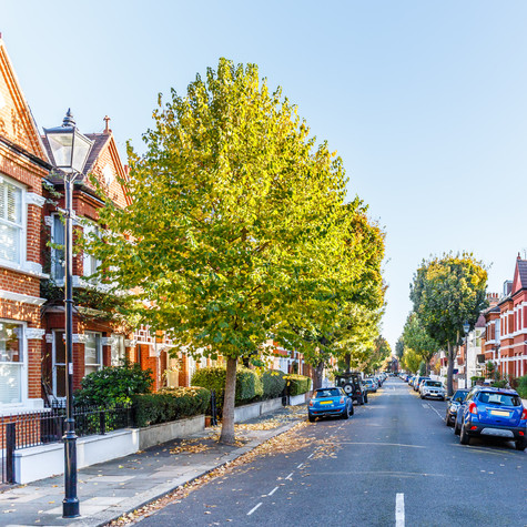 Domestic properties and HMO