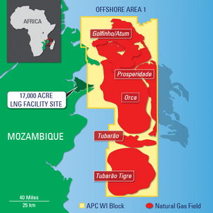 Moz LNG deals stuck on domestic market offtake